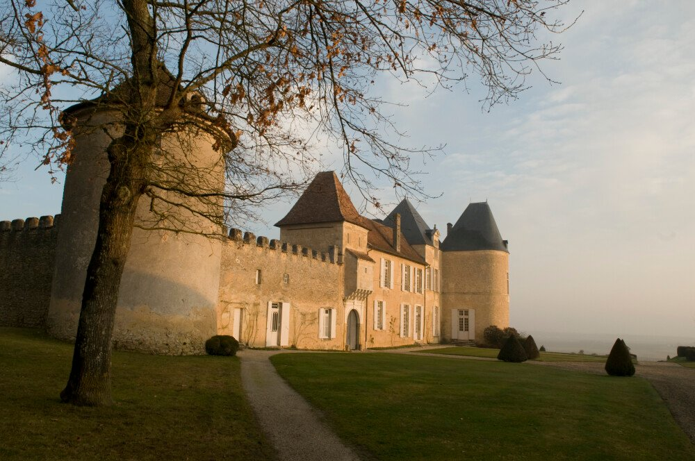 10 Things to know about Château d'Yquem